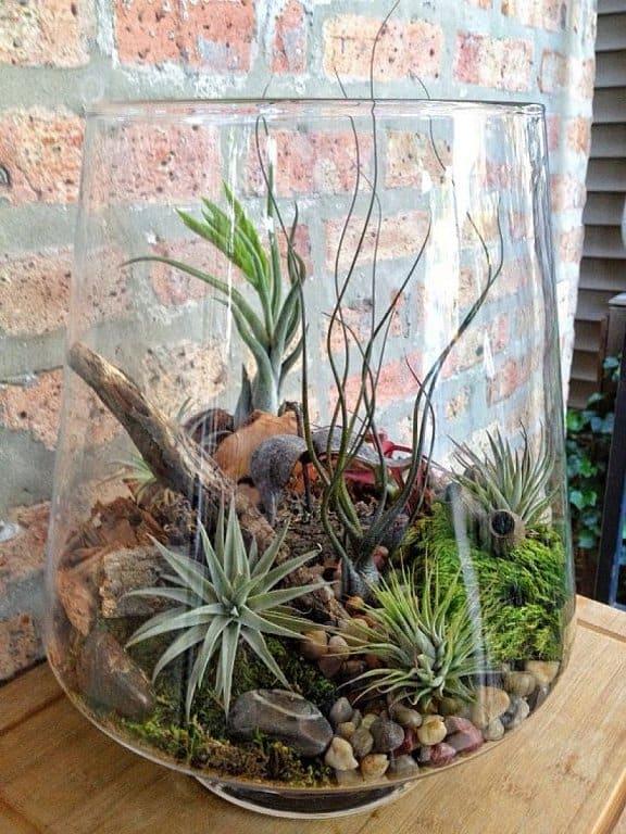 Evinize Yeşili Katacak 17 Terrarium Fikri (14)